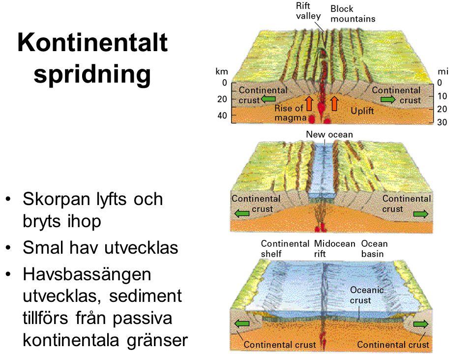 Kontinentalt spridning Skorpan lyfts och bryts ihop Smal hav utvecklas Havsbassängen utvecklas, sediment tillförs från passiva kontinentala gränser