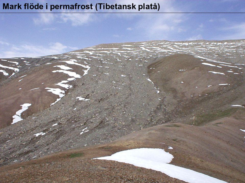 Mark flöde i permafrost (Tibetansk platå)