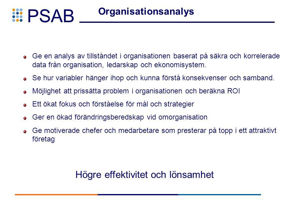 PSAB Organisationsanalys Ge en analys av tillståndet i organisationen baserat på säkra och korrelerade data från organisation, ledarskap och ekonomisystem.
