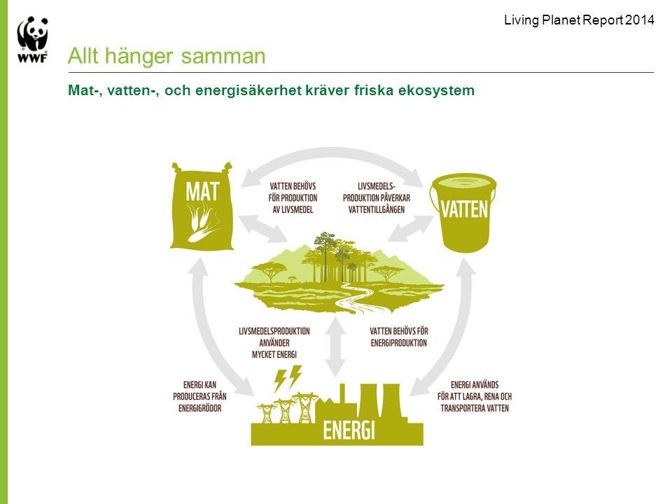 Allt hänger samman Mat-, vatten-, och energisäkerhet kräver friska ekosystem