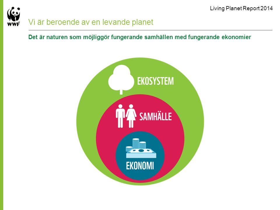 Vi är beroende av en levande planet Det är naturen som möjliggör fungerande samhällen med fungerande ekonomier