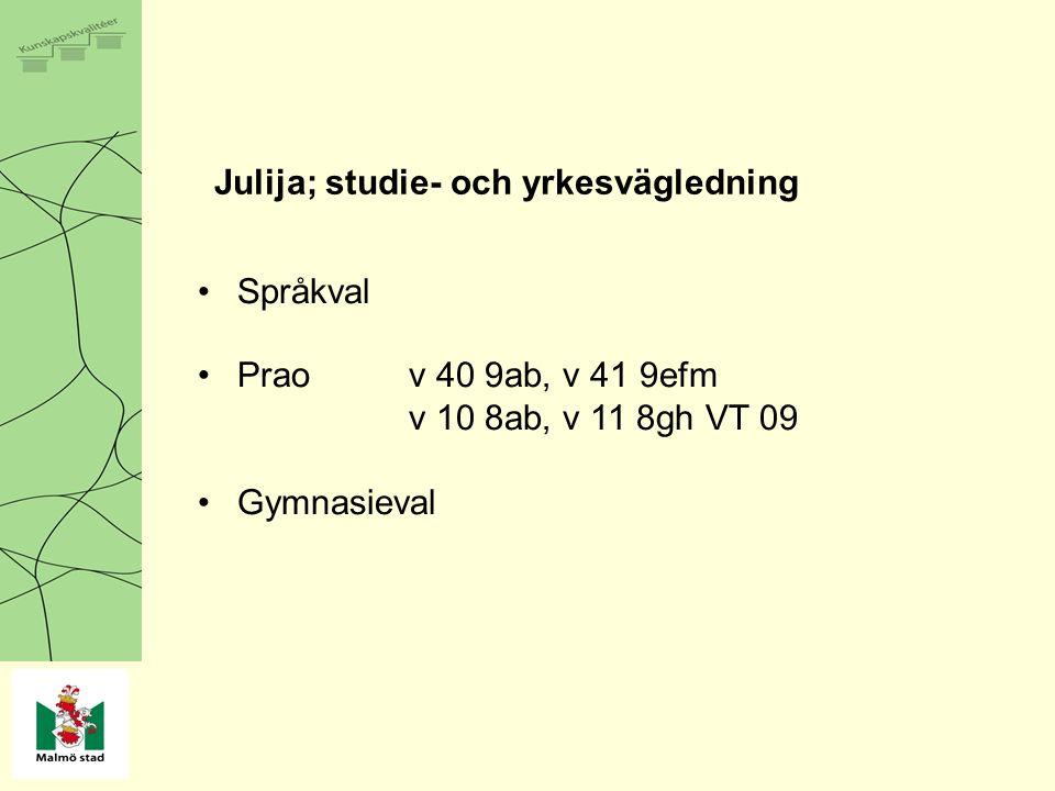 Julija; studie- och yrkesvägledning Språkval Prao v 40 9ab, v 41 9efm v 10 8ab, v 11 8gh VT 09 Gymnasieval