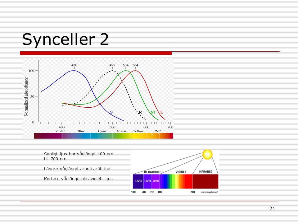 21 Synceller 2 Synligt ljus har våglängd 400 nm till 700 nm Längre våglängd är infrarött ljus Kortare våglängd ultraviolett ljus