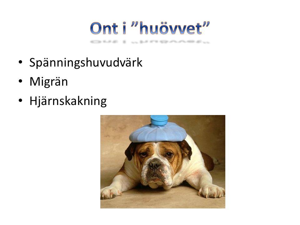 Spänningshuvudvärk Migrän Hjärnskakning