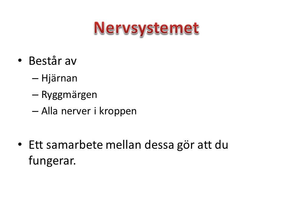 Centrala nervsystemet Perifera nervsystemet Ryggmärg och hjärna.