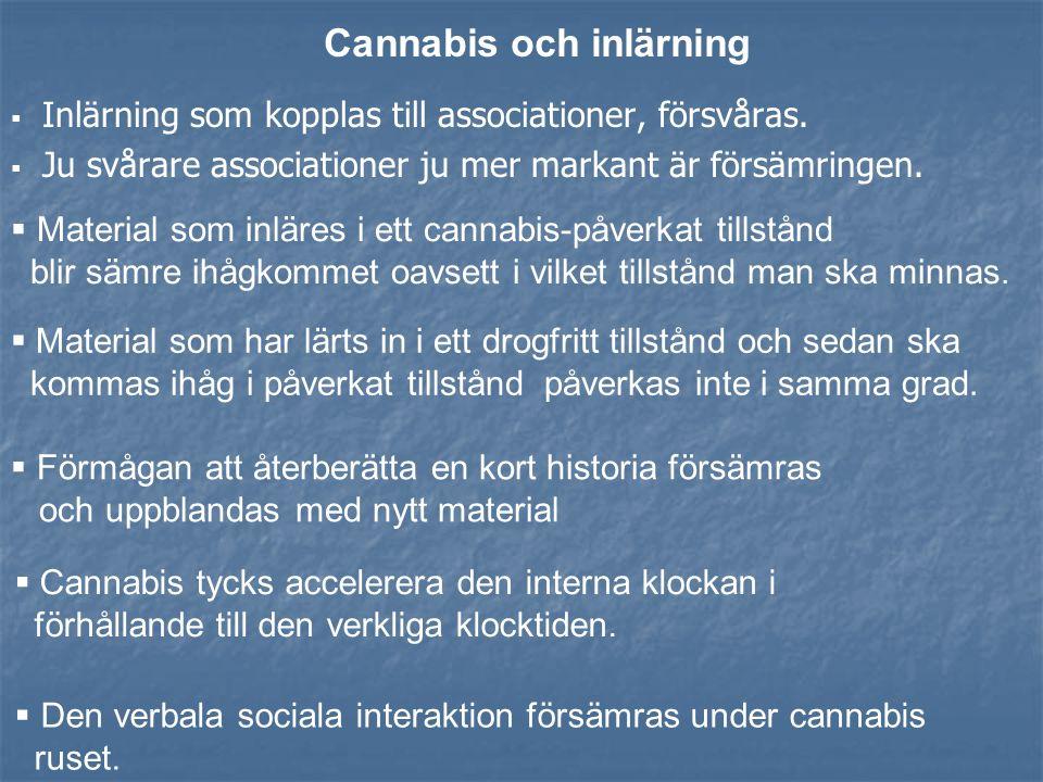 Regelbundet cannabismissbruk hos tonåringar innebär att bruket leder till en förhöjd risk för fortsatta och kanske även förhöjda livssvårigheter när d
