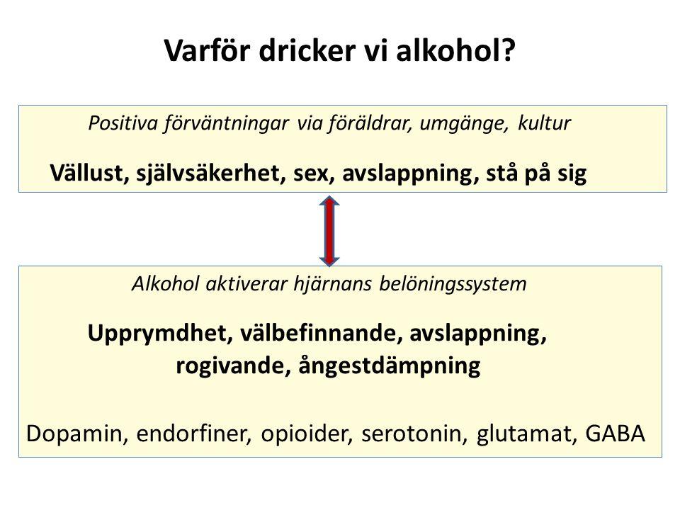 Varför dricker vi alkohol.