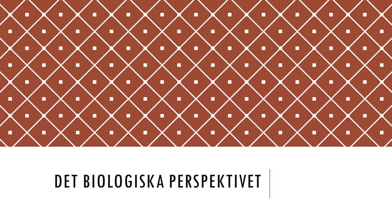 DET BIOLOGISKA PERSPEKTIVET