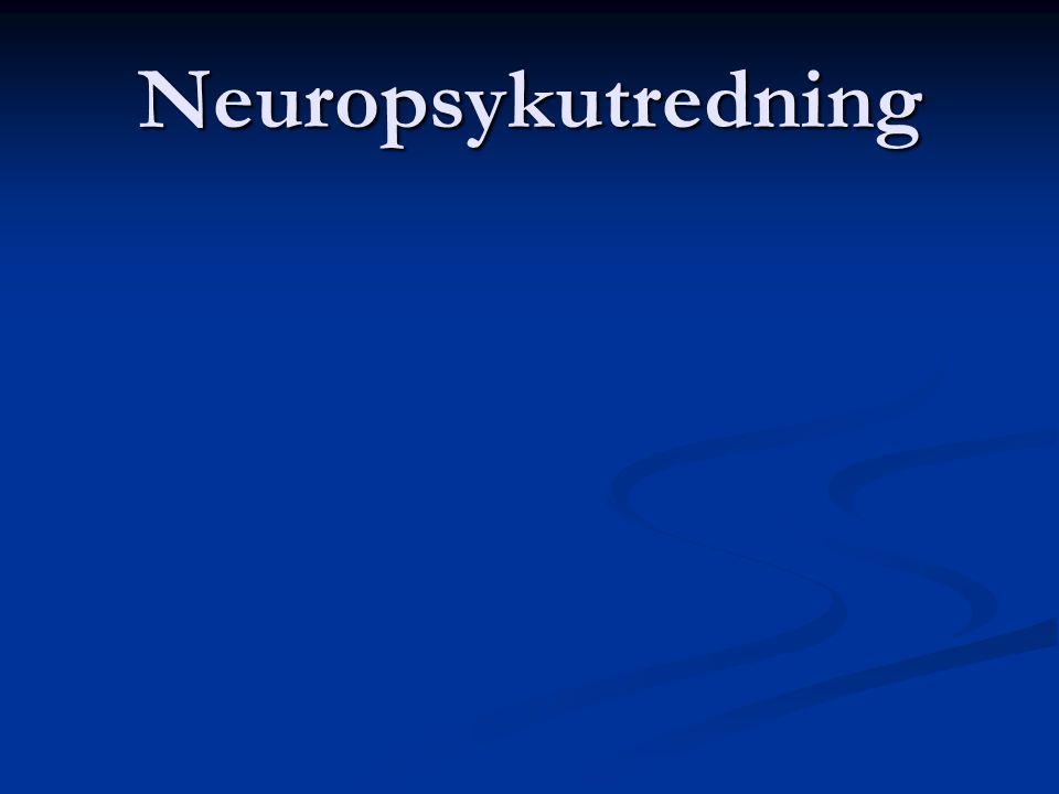 Neuropsykutredning