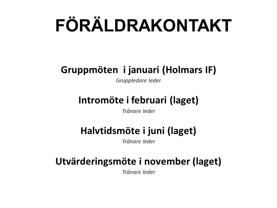 FÖRÄLDRAKONTAKT Gruppmöten i januari (Holmars IF) Gruppledare leder Intromöte i februari (laget) Tränare leder Halvtidsmöte i juni (laget) Tränare led