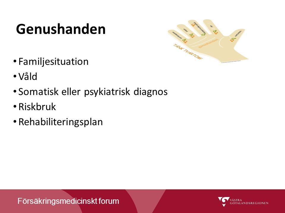 Genushanden Familjesituation Våld Somatisk eller psykiatrisk diagnos Riskbruk Rehabiliteringsplan