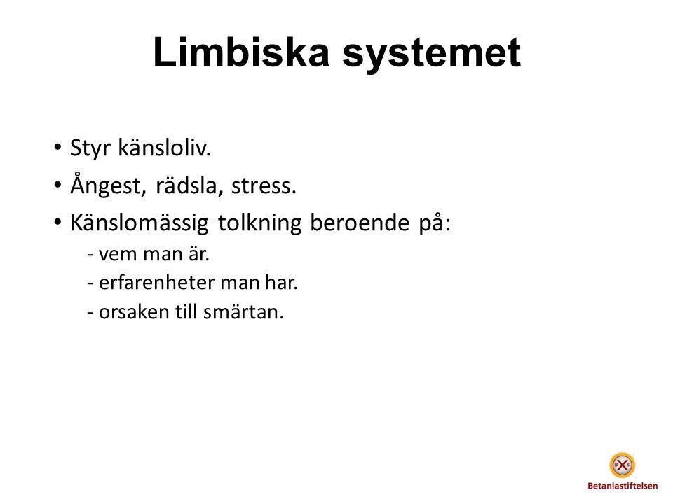 Limbiska systemet Styr känsloliv. Ångest, rädsla, stress.
