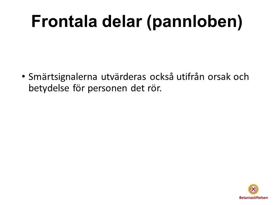 Frontala delar (pannloben) Smärtsignalerna utvärderas också utifrån orsak och betydelse för personen det rör.