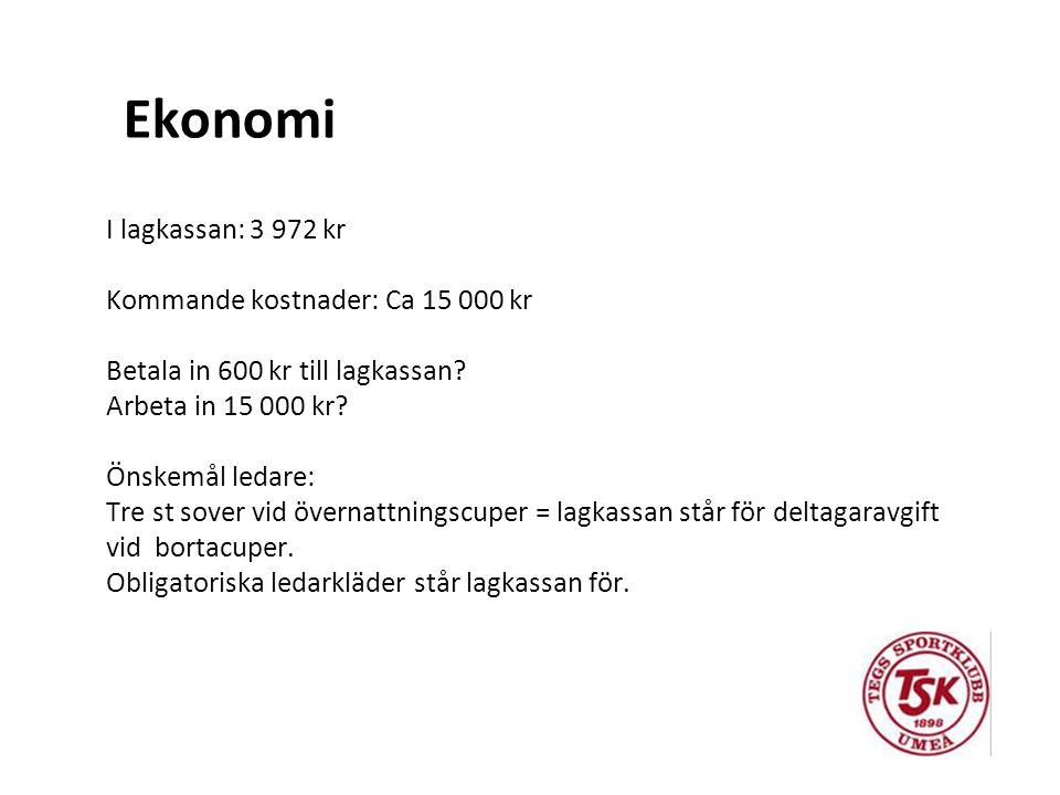 I lagkassan: 3 972 kr Kommande kostnader: Ca 15 000 kr Betala in 600 kr till lagkassan.