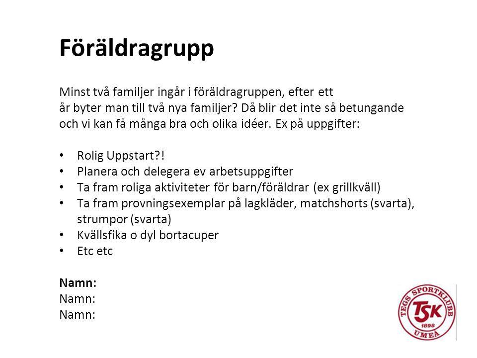 Kassör Inlog från Handelsbanken behövs (klubben fixar).