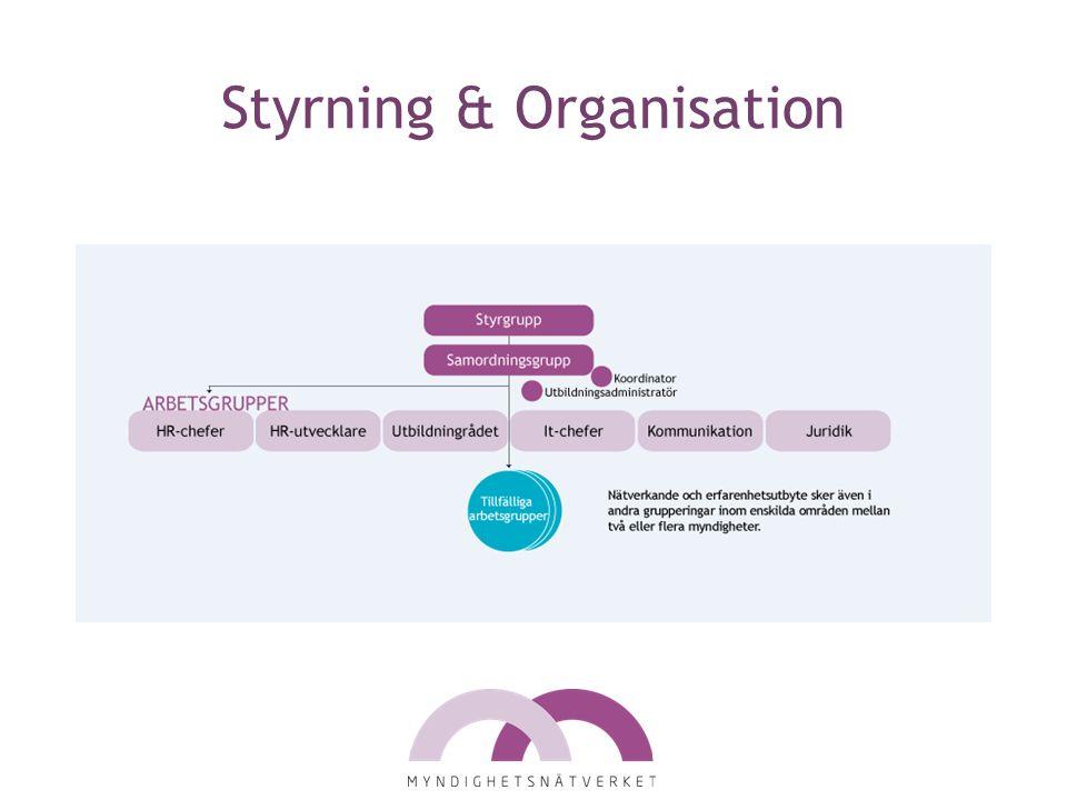 Styrning & Organisation