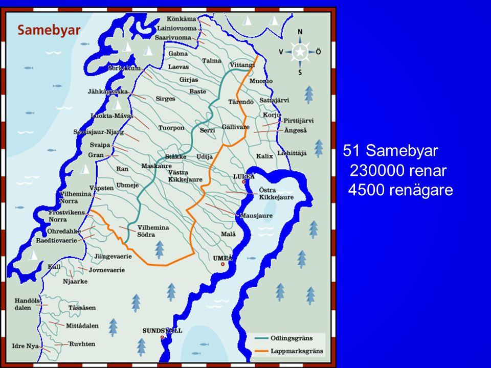 Flest samer lever i norrbotten 47 % Norrbotten 21 % Västerbotten 3 % Västernorrland 8 % Jämtland 21 % övriga län Leg psykolog Lotta Omma