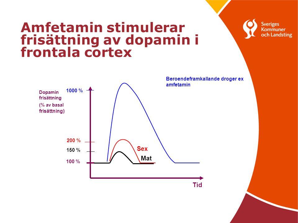 Amfetamin stimulerar frisättning av dopamin i frontala cortex Tid Dopamin frisättning (% av basal frisättning) 100 % 1000 % 200 % Sex 150 % Mat Beroendeframkallande droger ex amfetamin