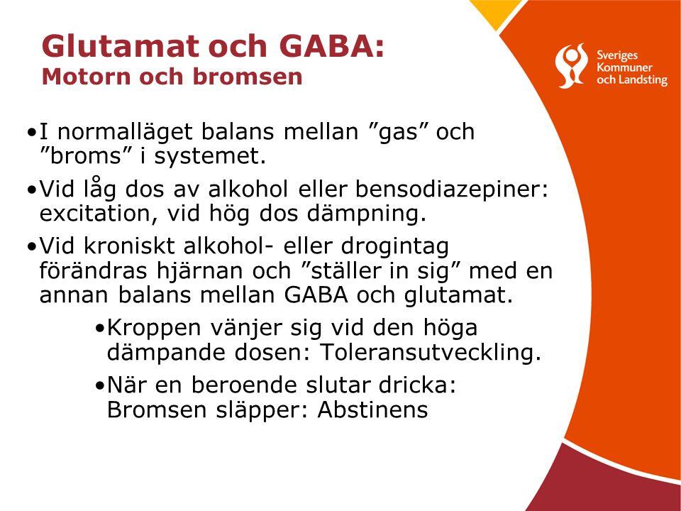 Glutamat och GABA: Motorn och bromsen I normalläget balans mellan gas och broms i systemet.