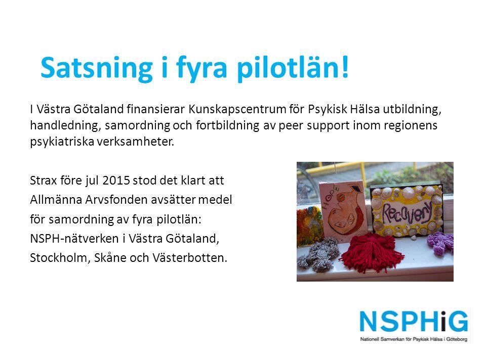 I Västra Götaland finansierar Kunskapscentrum för Psykisk Hälsa utbildning, handledning, samordning och fortbildning av peer support inom regionens psykiatriska verksamheter.