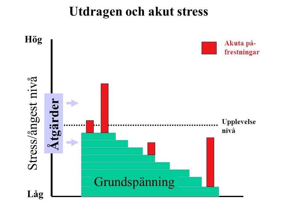 Grundspänning Stress/ångest nivå Upplevelse nivå Hög Låg Akuta på- frestningar Utdragen och akut stress Åtgärder