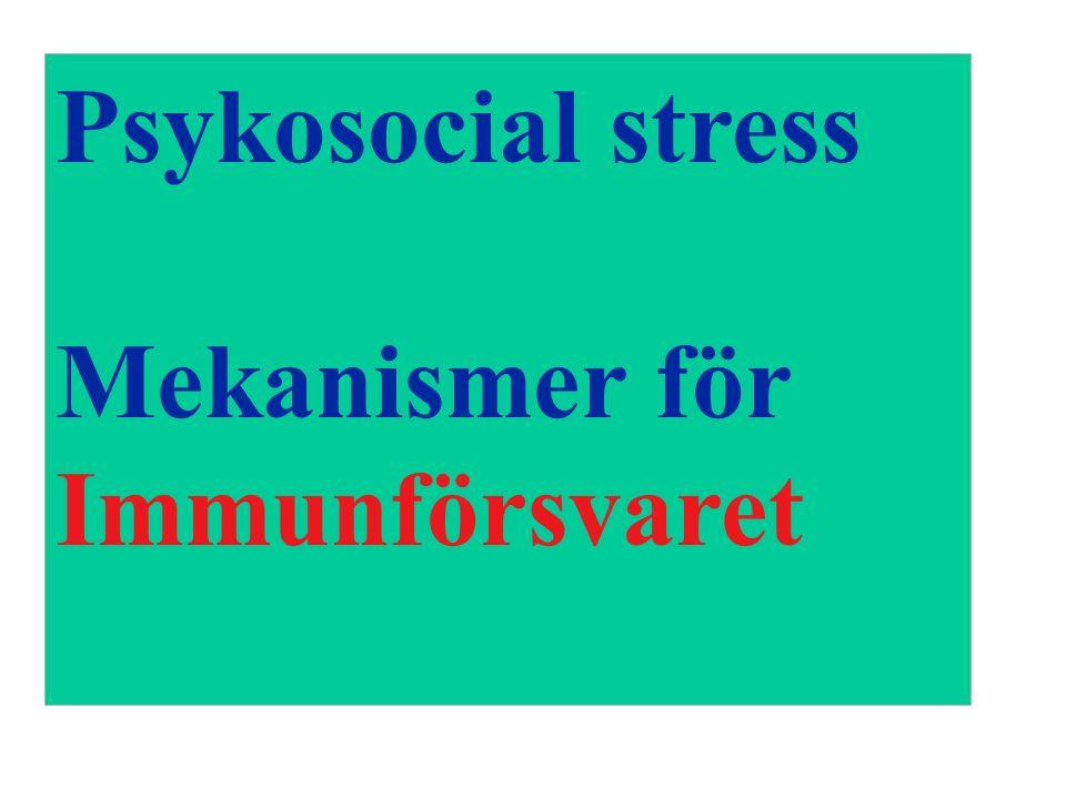 Psykosocial stress Mekanismer för Immunförsvaret