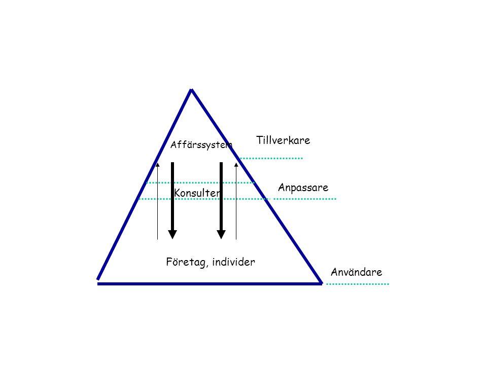 Tillverkare Affärssystem Anpassare Konsulter Företag, individer Användare
