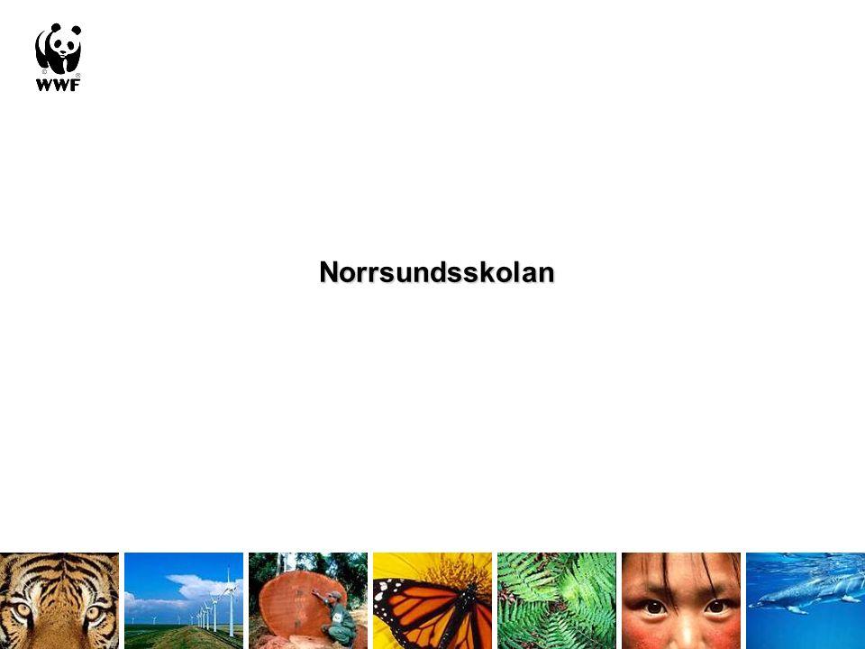Norrsundsskolan