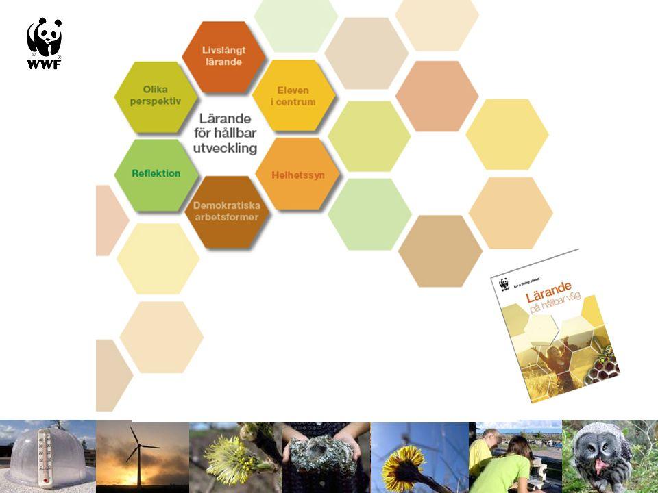 Rådet för Hållbar Utveckling Ekologi Den lokala miljön Ekologiska fotavtryck HU i kurser HU i fokus på skolan