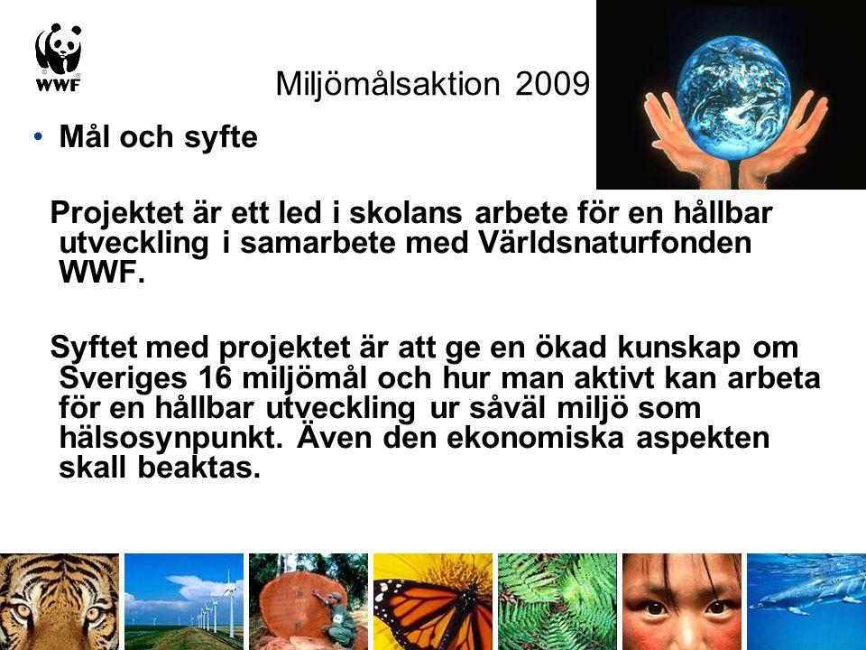 Miljömålsaktion 2009 Mål och syfte Projektet är ett led i skolans arbete för en hållbar utveckling i samarbete med Världsnaturfonden WWF. Syftet med p