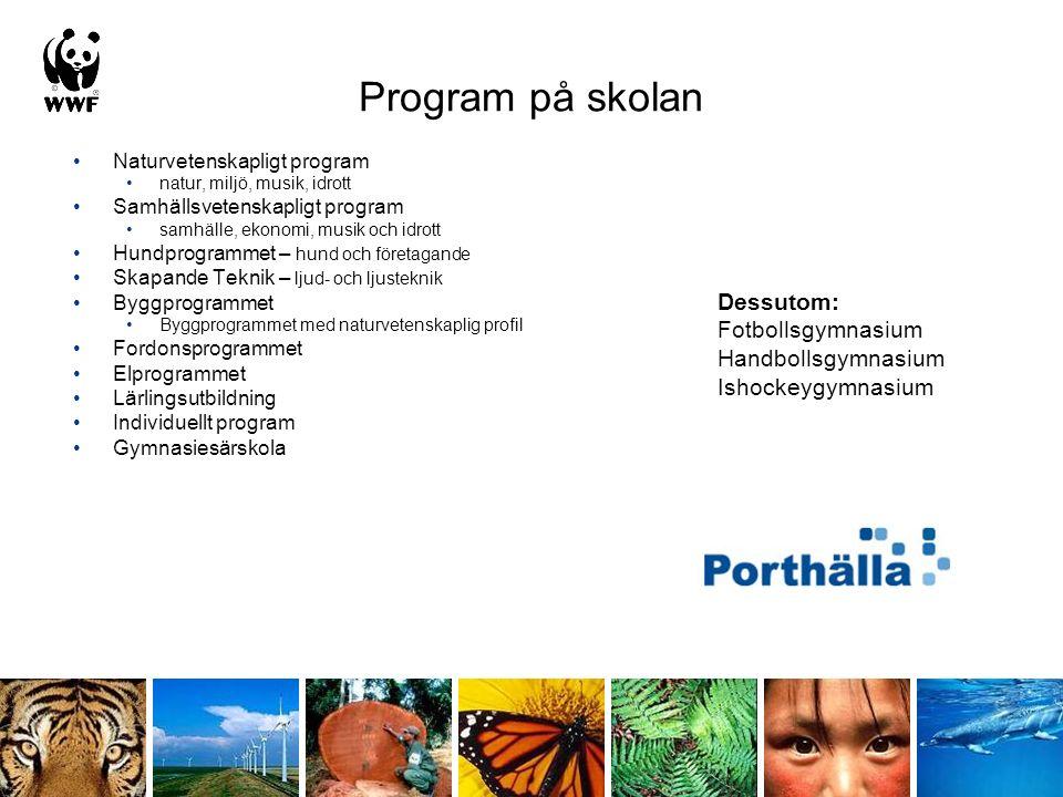 Program på skolan Naturvetenskapligt program natur, miljö, musik, idrott Samhällsvetenskapligt program samhälle, ekonomi, musik och idrott Hundprogram