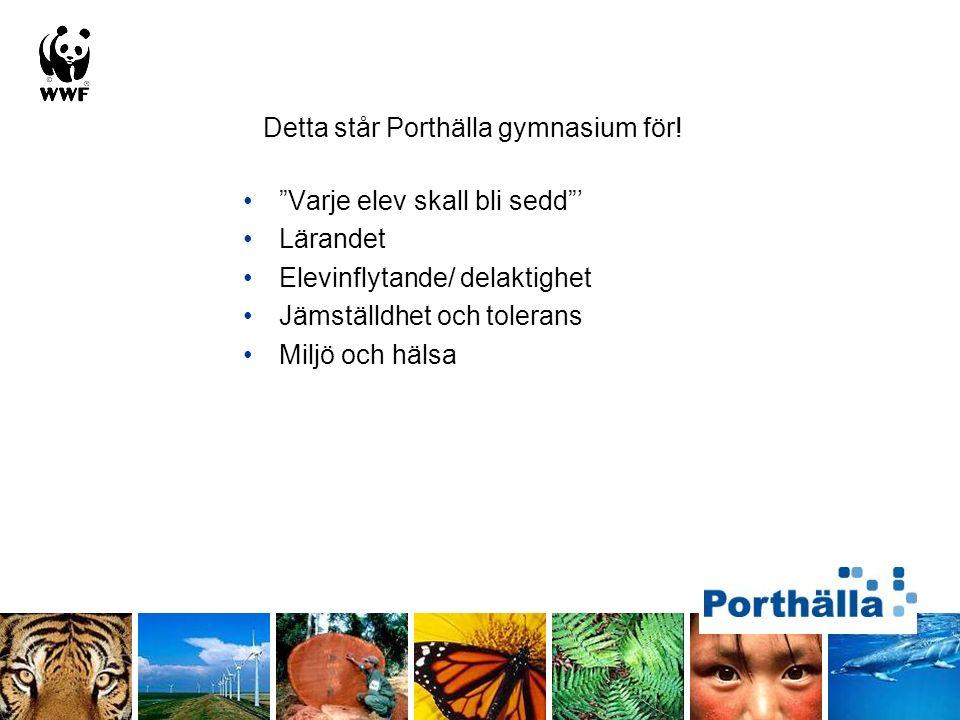 """Detta står Porthälla gymnasium för! """"Varje elev skall bli sedd""""' Lärandet Elevinflytande/ delaktighet Jämställdhet och tolerans Miljö och hälsa"""