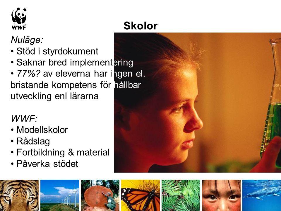 Skolor Nuläge: Stöd i styrdokument Saknar bred implementering 77%.