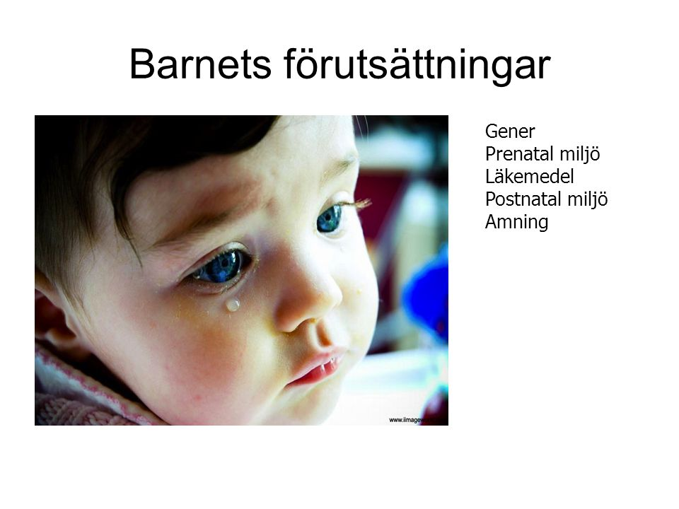 Barnets förutsättningar Gener Prenatal miljö Läkemedel Postnatal miljö Amning