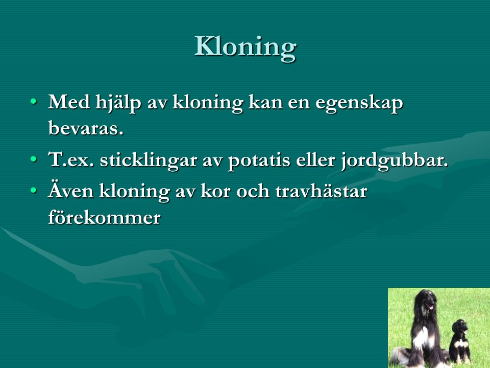 Kloning Med hjälp av kloning kan en egenskap bevaras.Med hjälp av kloning kan en egenskap bevaras. T.ex. sticklingar av potatis eller jordgubbar.T.ex.
