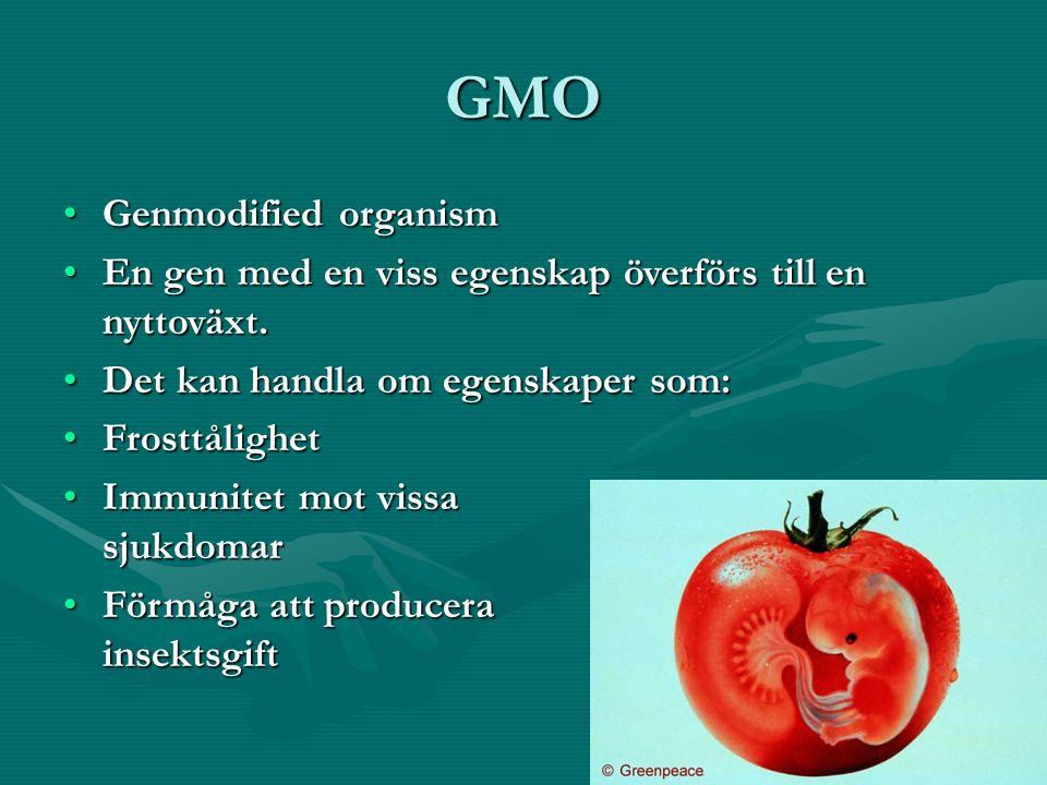 GMO Genmodified organismGenmodified organism En gen med en viss egenskap överförs till en nyttoväxt.En gen med en viss egenskap överförs till en nytto