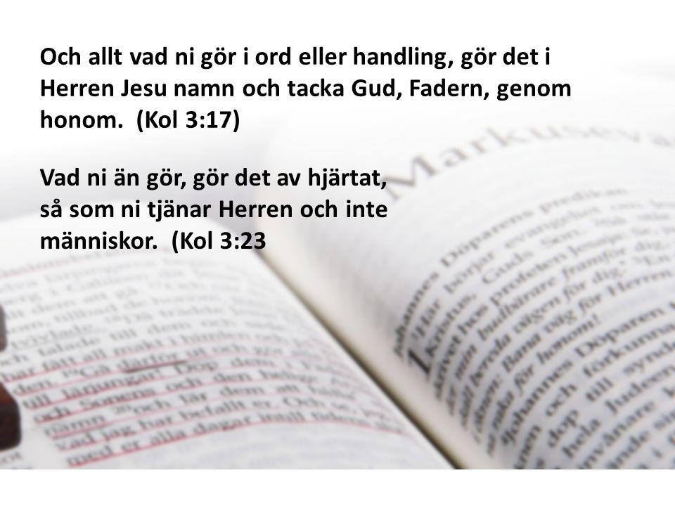 Och allt vad ni gör i ord eller handling, gör det i Herren Jesu namn och tacka Gud, Fadern, genom honom.