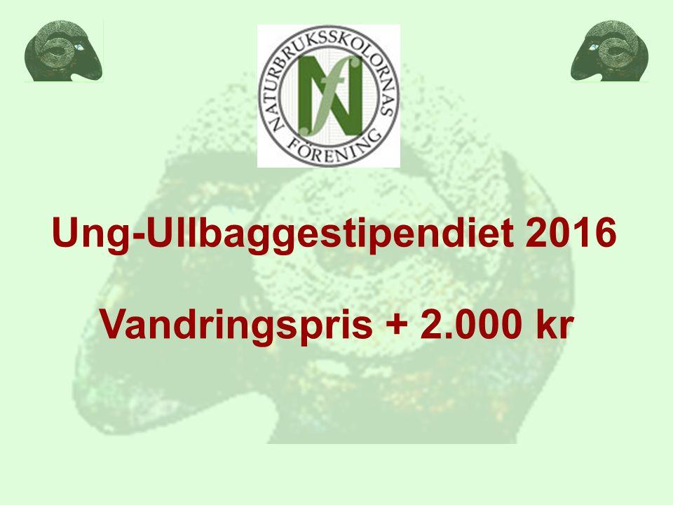 Ung-Ullbaggestipendiet 2016 Vandringspris + 2.000 kr