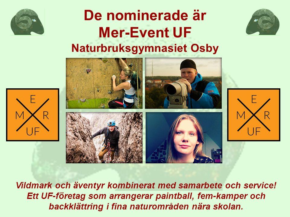 De nominerade är Mer-Event UF Naturbruksgymnasiet Osby Vildmark och äventyr kombinerat med samarbete och service! Ett UF-företag som arrangerar paintb