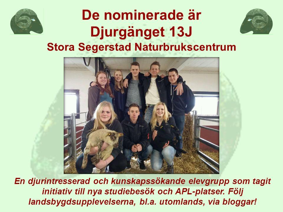 De nominerade är Djurgänget 13J Stora Segerstad Naturbrukscentrum En djurintresserad och kunskapssökande elevgrupp som tagit initiativ till nya studie