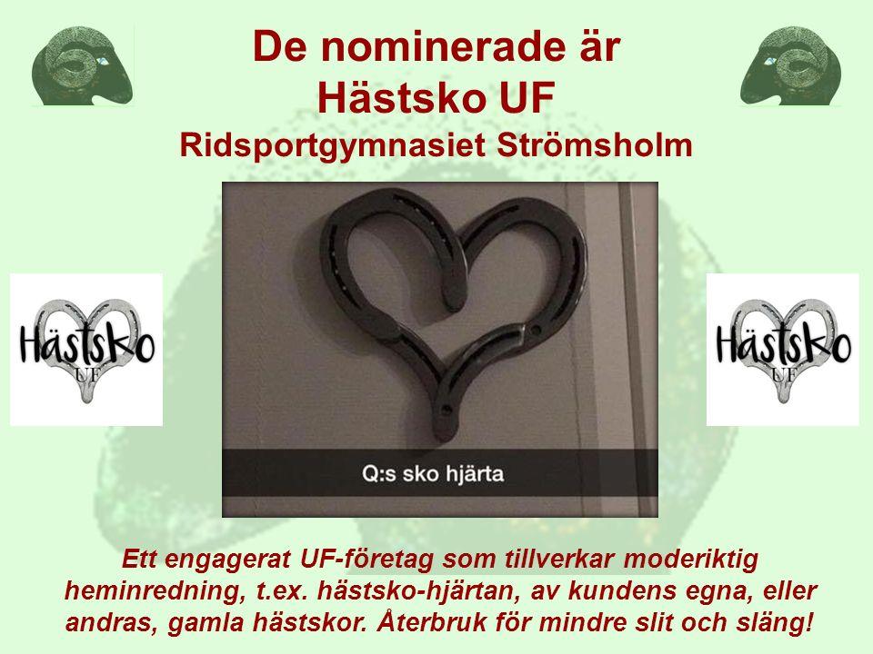 De nominerade är Hästsko UF Ridsportgymnasiet Strömsholm Ett engagerat UF-företag som tillverkar moderiktig heminredning, t.ex.