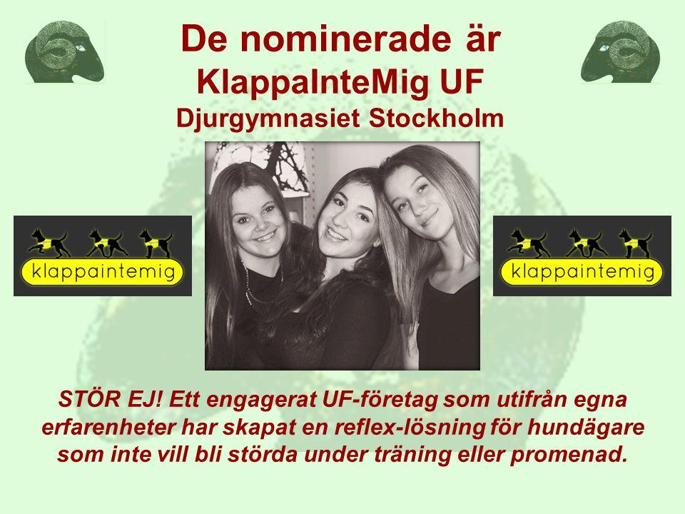 De nominerade är KlappaInteMig UF Djurgymnasiet Stockholm STÖR EJ! Ett engagerat UF-företag som utifrån egna erfarenheter har skapat en reflex-lösning