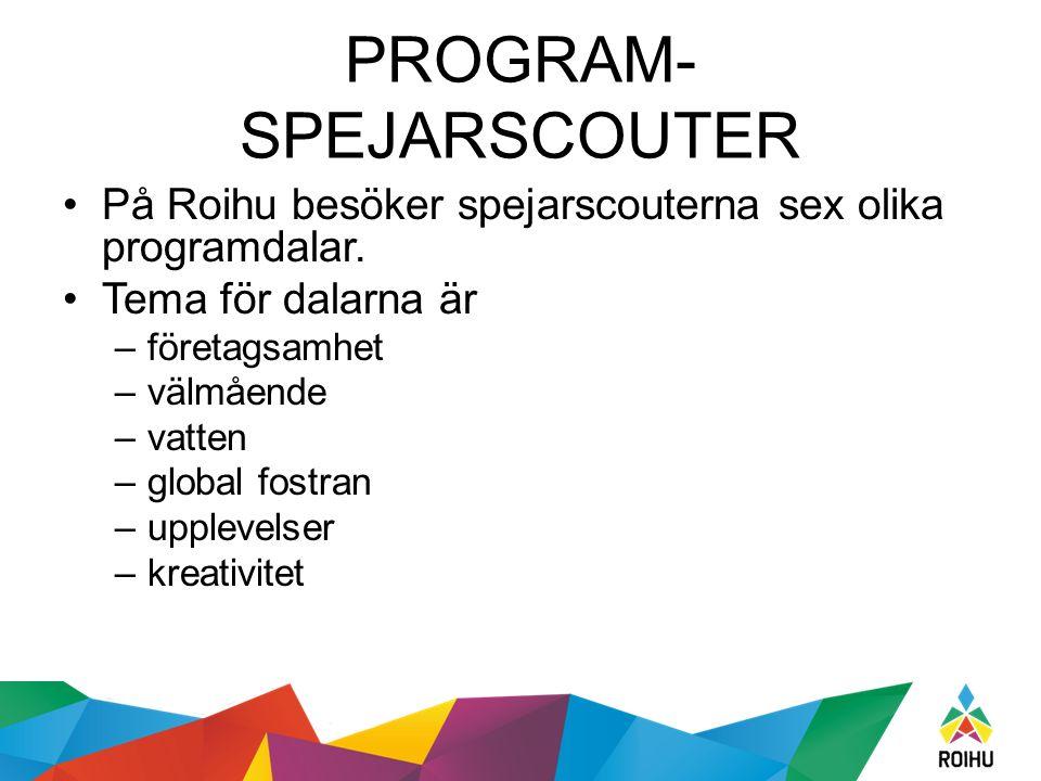 PROGRAM- SPEJARSCOUTER På Roihu besöker spejarscouterna sex olika programdalar.