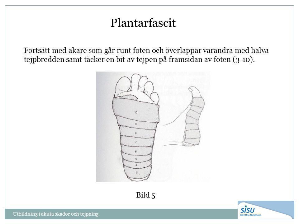Utbildning i akuta skador och tejpning Bild 5 Plantarfascit Fortsätt med akare som går runt foten och överlappar varandra med halva tejpbredden samt täcker en bit av tejpen på framsidan av foten (3-10).