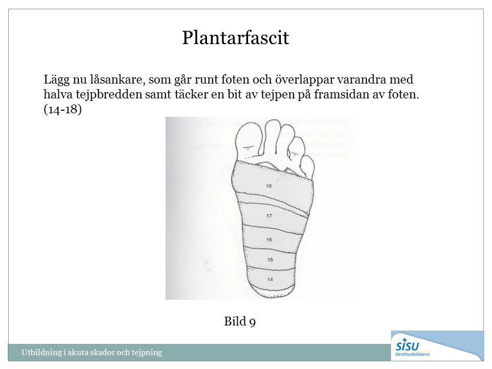 Utbildning i akuta skador och tejpning Bild 9 Plantarfascit Lägg nu låsankare, som går runt foten och överlappar varandra med halva tejpbredden samt täcker en bit av tejpen på framsidan av foten.