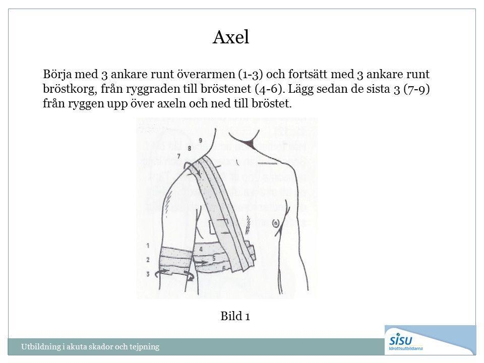 Utbildning i akuta skador och tejpning Bild 1 Axel Börja med 3 ankare runt överarmen (1-3) och fortsätt med 3 ankare runt bröstkorg, från ryggraden ti