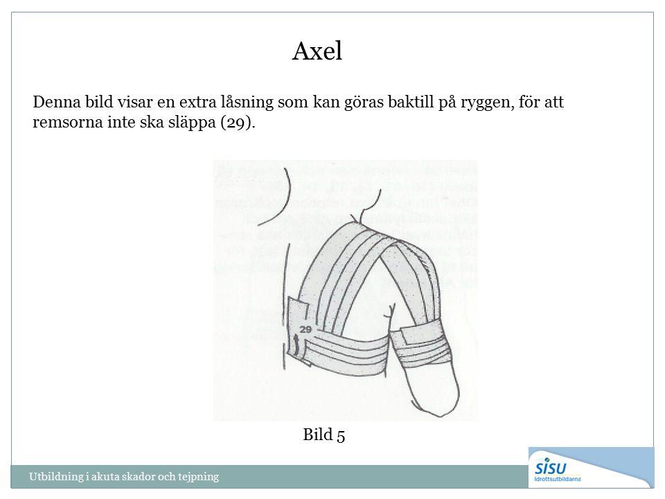 Utbildning i akuta skador och tejpning Bild 5 Axel Denna bild visar en extra låsning som kan göras baktill på ryggen, för att remsorna inte ska släppa (29).