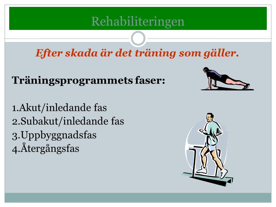 Efter skada är det träning som gäller. Träningsprogrammets faser: 1.Akut/inledande fas 2.Subakut/inledande fas 3.Uppbyggnadsfas 4.Återgångsfas Rehabil