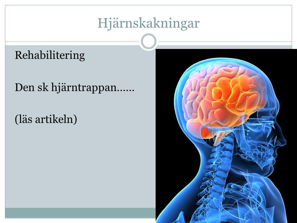 Hjärnskakningar Rehabilitering Den sk hjärntrappan…… (läs artikeln)