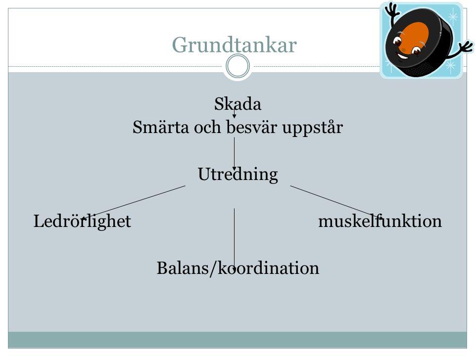 Skada Smärta och besvär uppstår Utredning Ledrörlighet muskelfunktion Balans/koordination Grundtankar